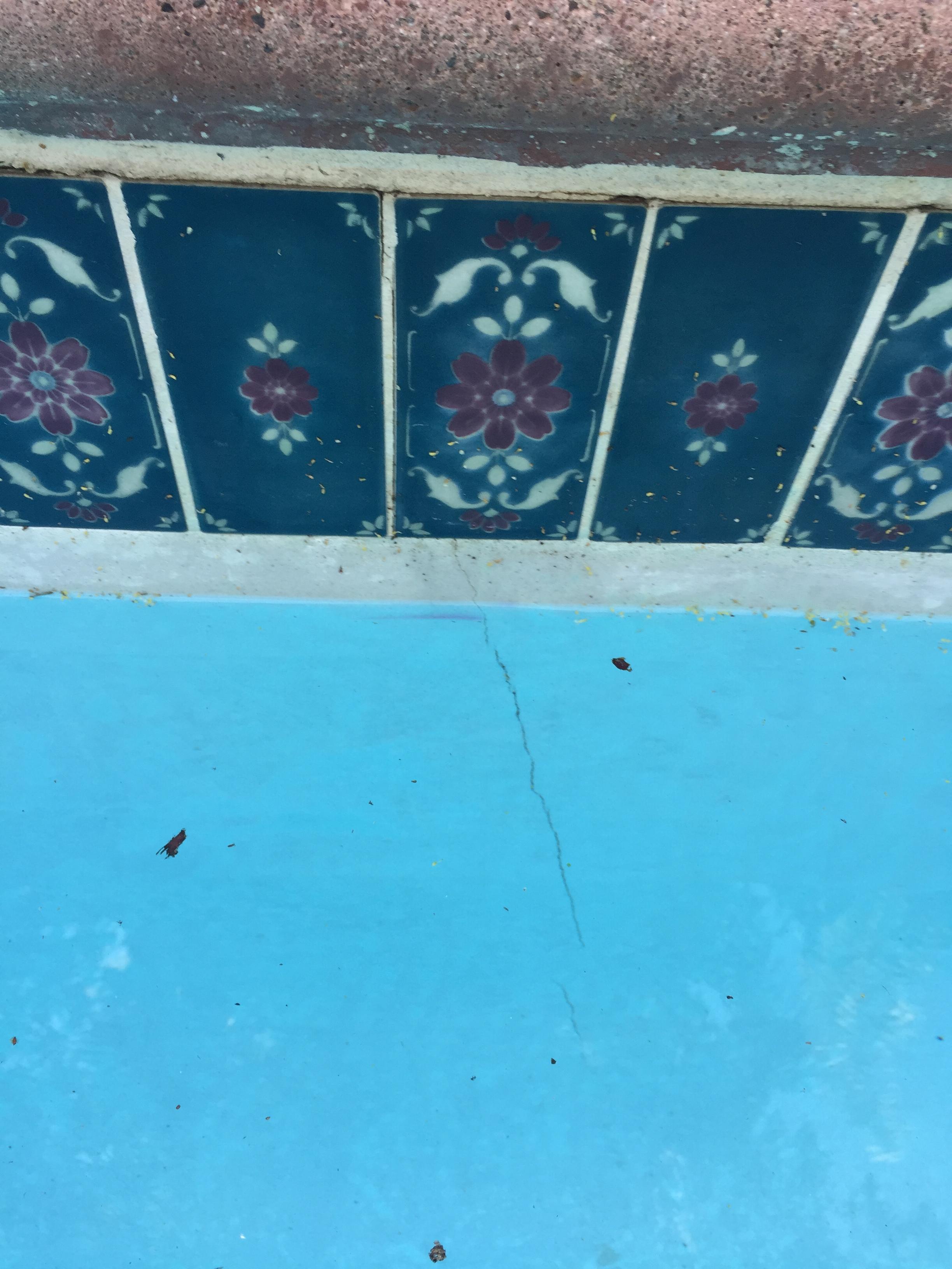 Pool Leak Detection In Northridge